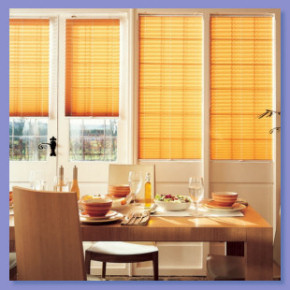 Window blinds derby
